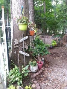 random yard potting area 142