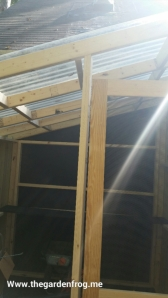 Next before I finished framing door, I had to add more supports for roof not to sag. I then started on back of shed with one corrugated sheet and lined it up with 1 groove hanging over edge. could not take pictures-it was precarious enough for me on a ladder in between boards with a chest that kept getting in the way.