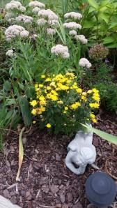 Blooming September