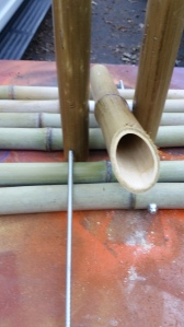 This is how eyeballed it. We had plenty of bamboo so if we made a mistake we could cut another one!