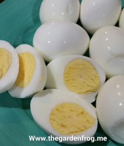 boil egg, boiled eggs, trick to boiling eggs