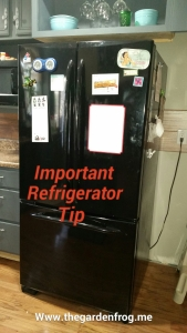 refrigertor maintenance, kitchen appliance tip, maintenance