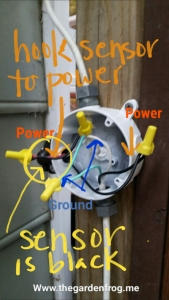 Hook the black power wire from the outlet and motion sensor together. Then hook the red power wire and the black power wire coming down from the light together. Then tie the colored ground wires together as show
