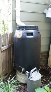 rain barrel, rain water storage
