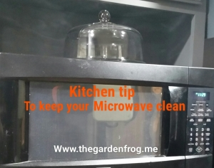 Kitchen tip to keep your microwave clean