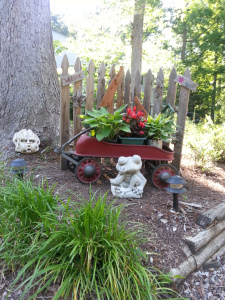 container gardening with hosta