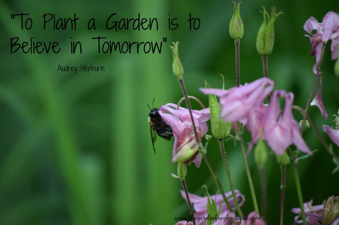 I am a gardener without a garden